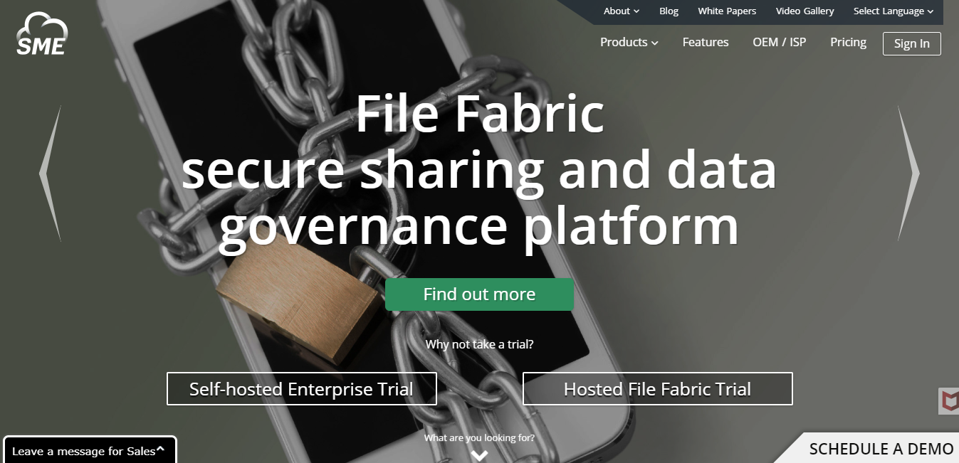 File Fabric hosted Review: