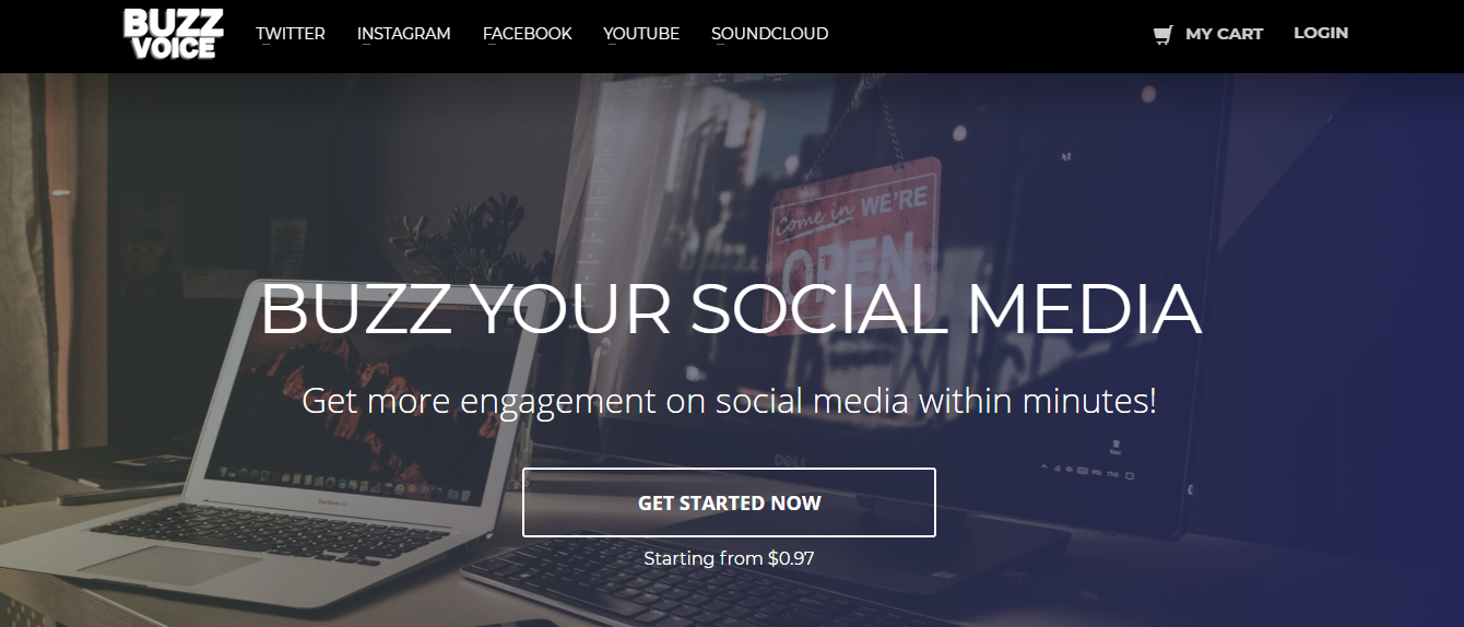 Buzzvoice Review: Buy High Quality Social Media Services